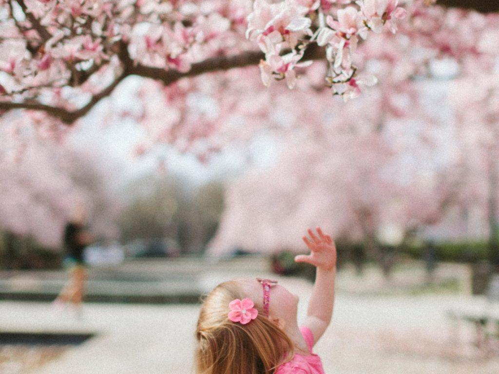 menopause yoga, second spring